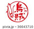 いか 烏賊 筆文字 水彩画 36643710