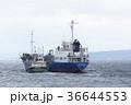 海 船 船舶の写真 36644553