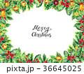 クリスマス あいさつ グリーティングのイラスト 36645025
