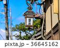 京都 石塀小路 和風の写真 36645162