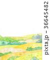自然風景 水彩 36645482