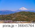丹那盆地 富士山 世界遺産の写真 36645764