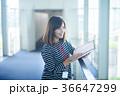 ビジネスウーマン カジュアル 36647299