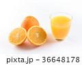 ネーブルオレンジとオレンジジュース 36648178