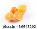 ネーブルオレンジとオレンジジュース 36648292