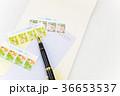 手紙 36653537