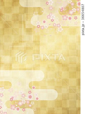 市松模様の金屏風 桜と雲 36654807
