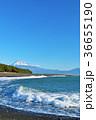 静岡県 三保の松原からの富士山と海 36655190