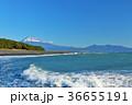 静岡県 三保の松原からの富士山と海 36655191