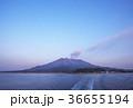 桜島と錦江湾 鹿児島観光 36655194
