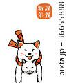 犬 猫 年賀状のイラスト 36655888