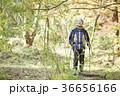 感情 季節 落葉の写真 36656166