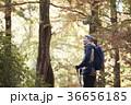 感情 季節 男の写真 36656185
