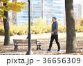 感情 季節 男の写真 36656309