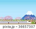 旅行 36657307