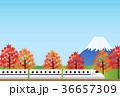 旅行 36657309