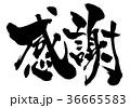 感謝 筆文字 漢字のイラスト 36665583