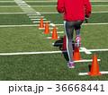 Female athlete running drills over cones 36668441