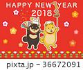 柴犬 犬 年賀状のイラスト 36672091