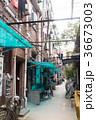 中国、上海の路地裏 36673003