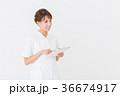 女性 ナース 看護師の写真 36674917