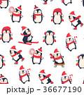 ぺんぎん ペンギン 冬のイラスト 36677190