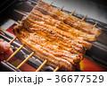 最高級日本産鰻の蒲焼 high quality Japanese broiled eel  36677529