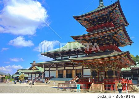 成田山新勝寺 三重塔と大本堂 36679148