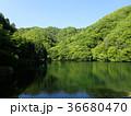 湖 36680470
