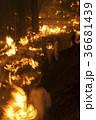 御燈祭り 神倉神社 火祭りの写真 36681439
