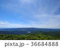 雲 新緑 初夏の写真 36684888