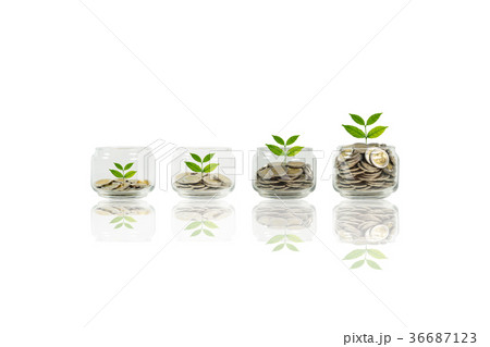 Coins and plant in bottle, Business investmentの写真素材 [36687123] - PIXTA