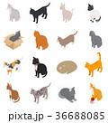 ねこ ネコ 猫のイラスト 36688085