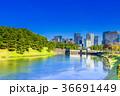 東京 皇居周辺の風景(桜田濠と桜田門) 36691449