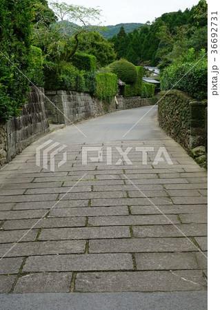 西郷どんロケ地(知覧武家屋敷の石垣と石畳) 36692731