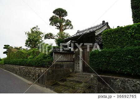 西郷どんロケ地(知覧武家屋敷の門と石垣と石畳) 36692765