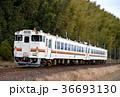 列車 ディーゼルカー 参宮線の写真 36693130