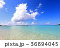 海 ビーチ 空の写真 36694045