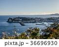 稲取 伊豆 港町の写真 36696930