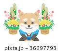 犬 年賀状素材 和服のイラスト 36697793