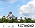 唐津城 舞鶴城 城の写真 36700202