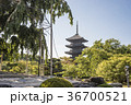 東寺 京都 五重塔の写真 36700521