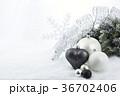 クリスマス 装飾 xマスの写真 36702406