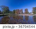 晩秋 風景 水元公園の写真 36704544