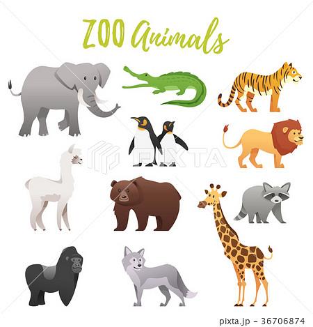 set of zoo animals 36706874