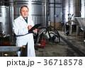 ワイン倉庫 設備 ワイン醸造所の写真 36718578