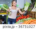 女性 レタス お店の写真 36731027