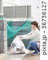 ゴミ出し 36736127
