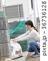 ゴミ出し 36736128