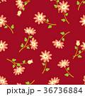 花 花柄 植物のイラスト 36736884
